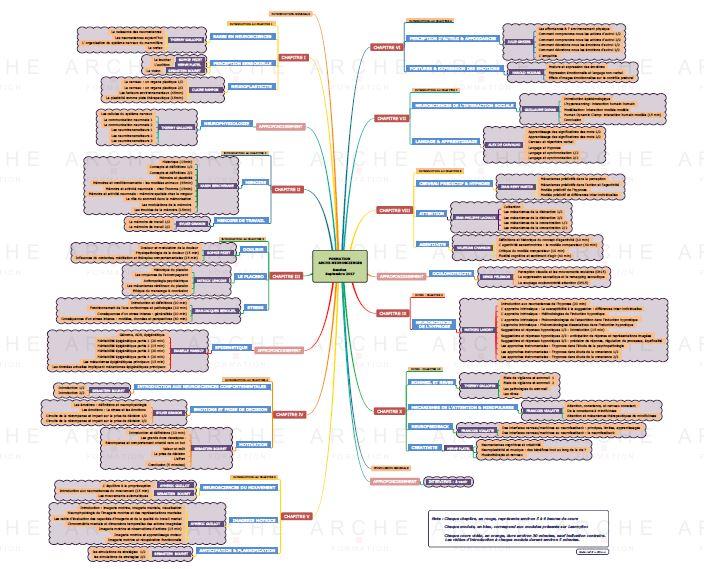 Plan de cours neurosciences