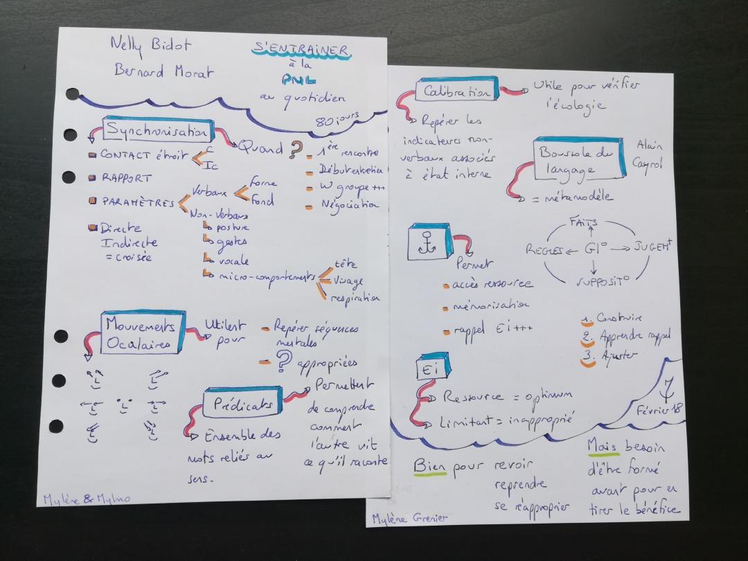 Notes de lecture - Mylène Grenier - 2018/02