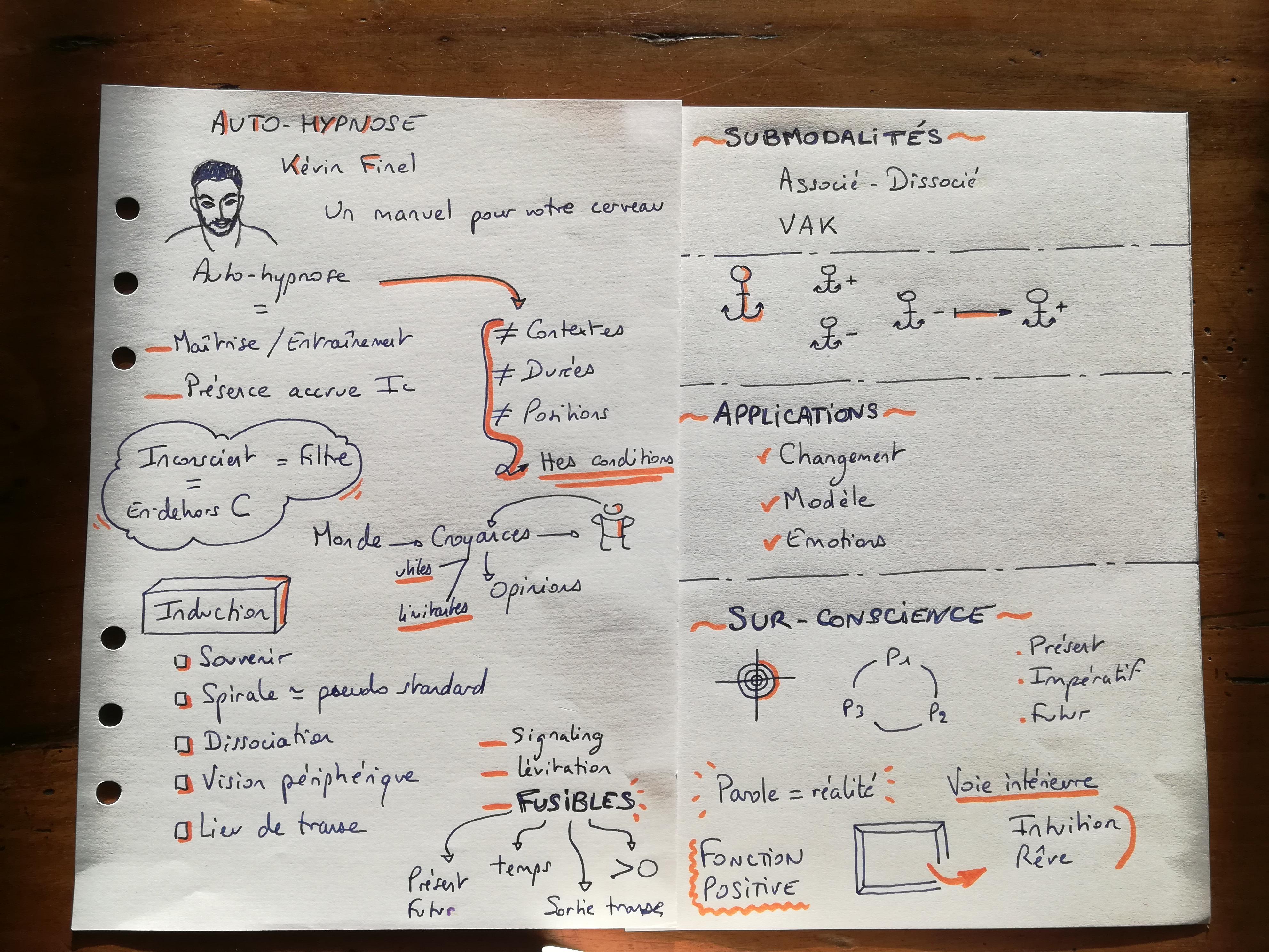 Auto-Hypnose - Kevin Finel - notes de lecture - Mylene Grenier (1)